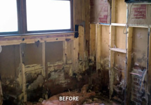 Water Damage Restoration - Cary